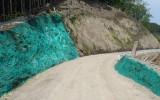 07総簡加)西名栗線森林管理道開設工事